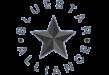 BlueStarAlliance_resize