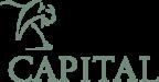 Lion_Capital-logo